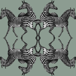 Zebra Riviera Wallpaper