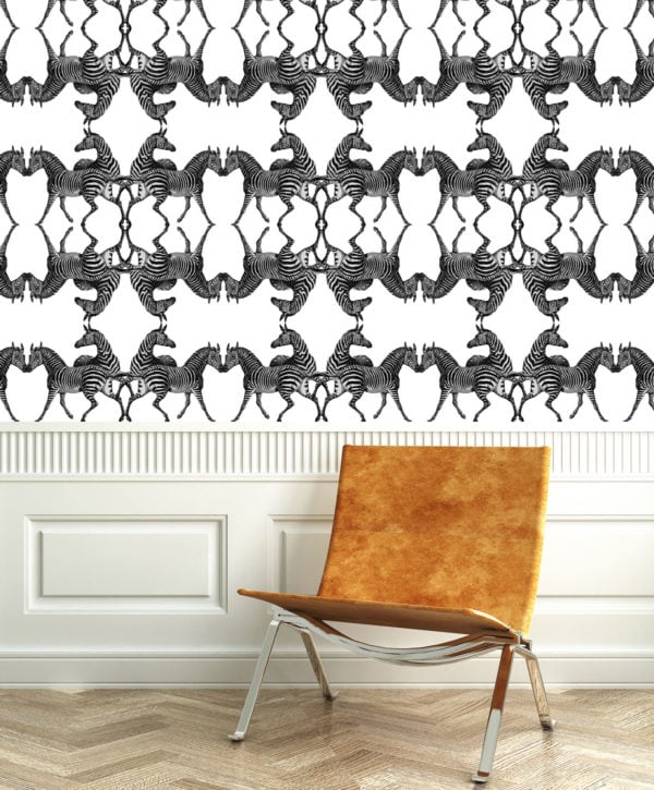Zebra Pirate Wallpaper