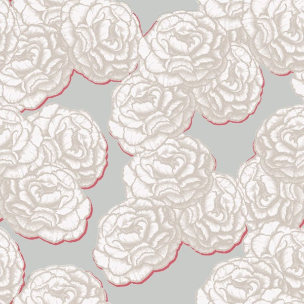 Blossom Champagne Wallpaper