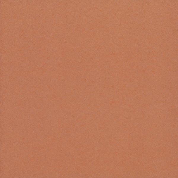 Joy Tangerine Wallpaper