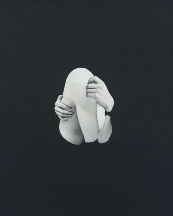 Flesh-Sophie-Vanhomwegen